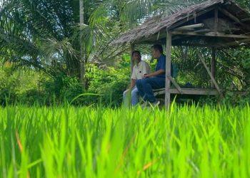 Amiruddin sedang berbincang dengan petani.